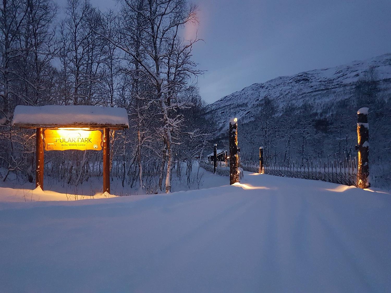 Polar Park près de Tromsø