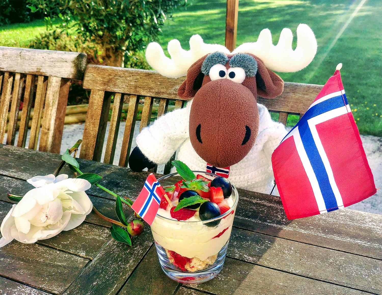 Elgar l'élan célèbre la fête nationale en Norvège