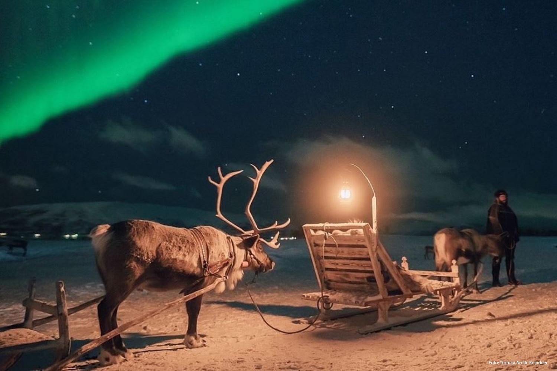 La magie de Noël à Tromsø